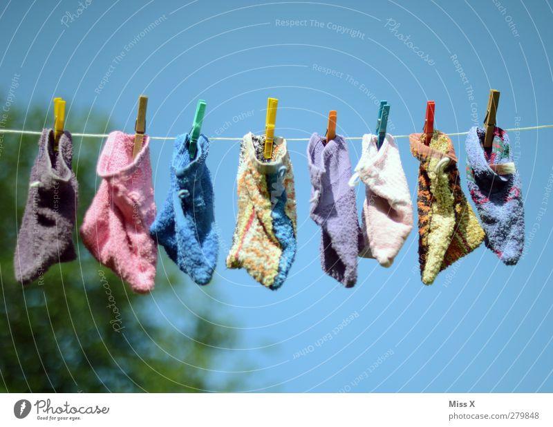 Wasch(lappen)tag Körperpflege hängen nass trocken Waschen Wäsche waschen Reinigen Angsthase Wäscheklammern Wäscheleine Putztuch trocknen Farbfoto mehrfarbig