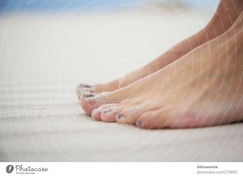 Strandläufer Mensch Natur Ferien & Urlaub & Reisen Sommer Sonne Meer Freude Strand Erholung Freiheit Sand Fuß Freizeit & Hobby Insel Schönes Wetter Nordsee