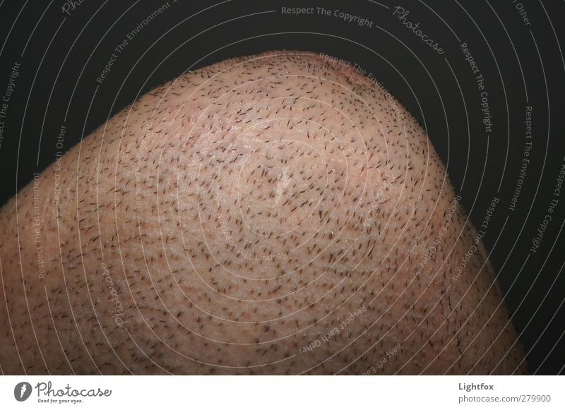 Kinn i net schwarz Gesicht Haare & Frisuren Haut maskulin Behaarung Kosmetik Bart Dreitagebart