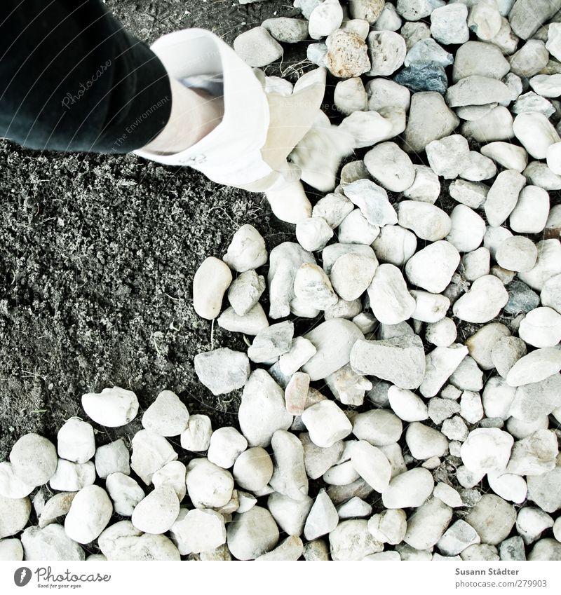 männlich   tatkräftig Garten Stein Erde viele Baustelle bauen Bauarbeiter Handschuhe bedecken arbeitend