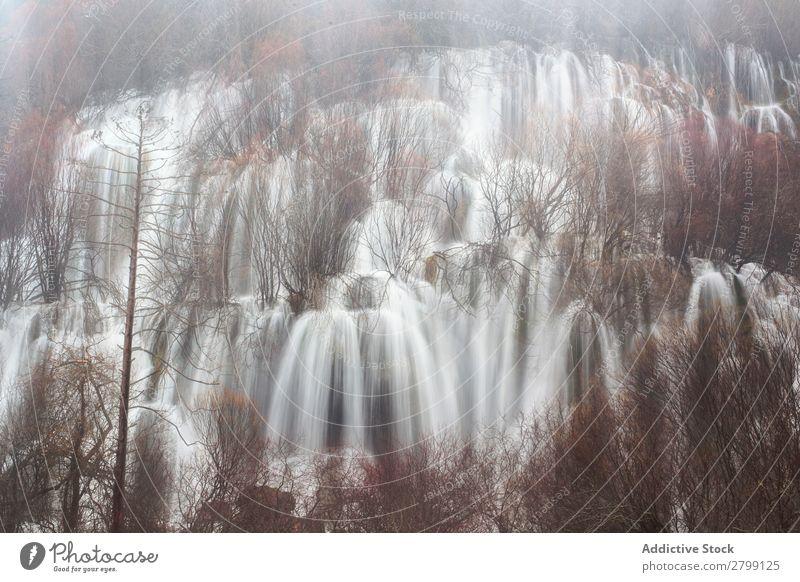 Wunderschöner Wasserfall beim Baum wild Kaskade rio cuervo Spanien Cuenca fallend strömen Höhe erstaunlich Holz Felsen Berge u. Gebirge Natur Stein Pflanze