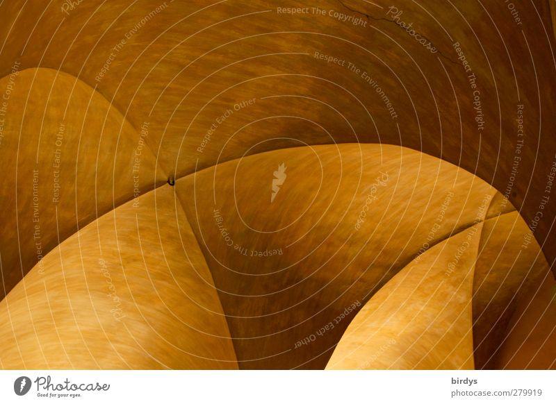 Architektur vom Feinsten schön Stadt Wärme Stil Stimmung Kunst außergewöhnlich elegant leuchten ästhetisch rund historisch malerisch Geometrie Symmetrie