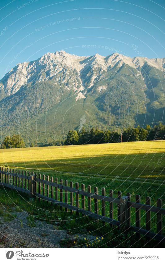 Tiroler Berge am Morgen Sommerurlaub Berge u. Gebirge Landschaft Wolkenloser Himmel Schönes Wetter Wiese Bundesland Tirol Gipfel leuchten authentisch natürlich