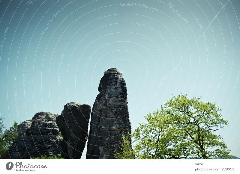 Hinkelstein Himmel Natur grün Pflanze Baum Landschaft Umwelt Berge u. Gebirge Frühling Freiheit Felsen Klima wild groß hoch authentisch