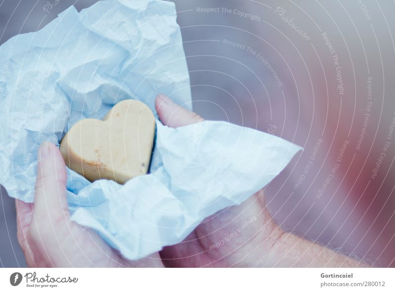 Comme un oiseau je vole Mensch Mann Erwachsene Partner Hand Finger 1 Verpackung Herz Liebe Geschenk Geschenkpapier Souvenir geben Farbfoto