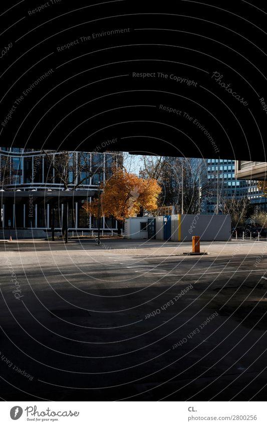 stille straßen Herbst Schönes Wetter Baum Stadt Menschenleer Haus Hochhaus Platz Bauwerk Gebäude Architektur Mauer Wand Container dunkel Parkplatz Farbfoto