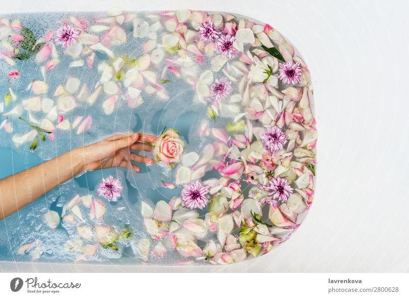 Bad gefüllt mit Wasser, Blumen und Blütenblättern mit Frauenhand Finger Hand aromatisch Kunst Schwimmen & Baden Badewanne Beautyfotografie blau Bombe