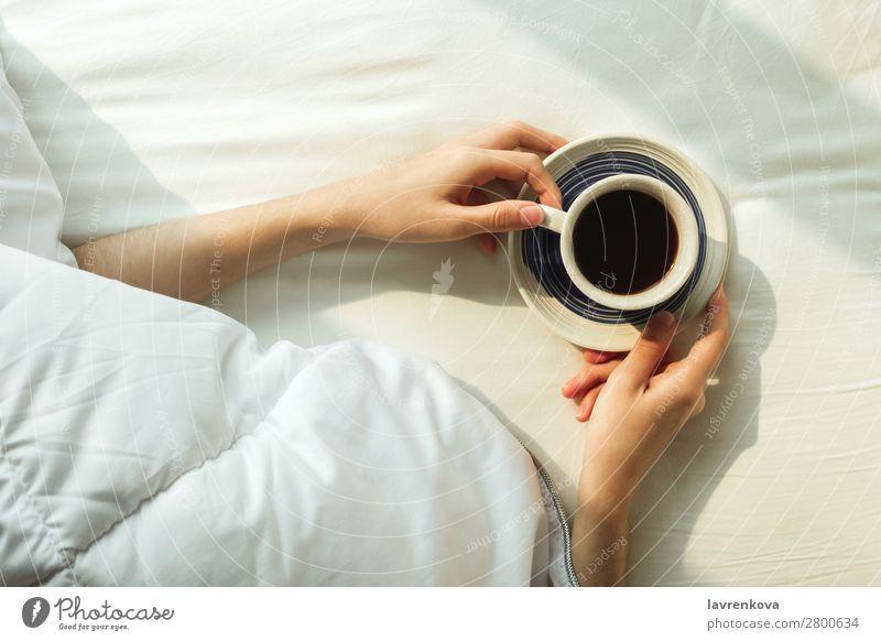 Flache Auflage der Frauenhände, die von einer Decke bedeckt ist, die Kaffee hält. schön Schlafzimmer Frühstück Geborgenheit gemütlich Tasse Getränk Flachlegung