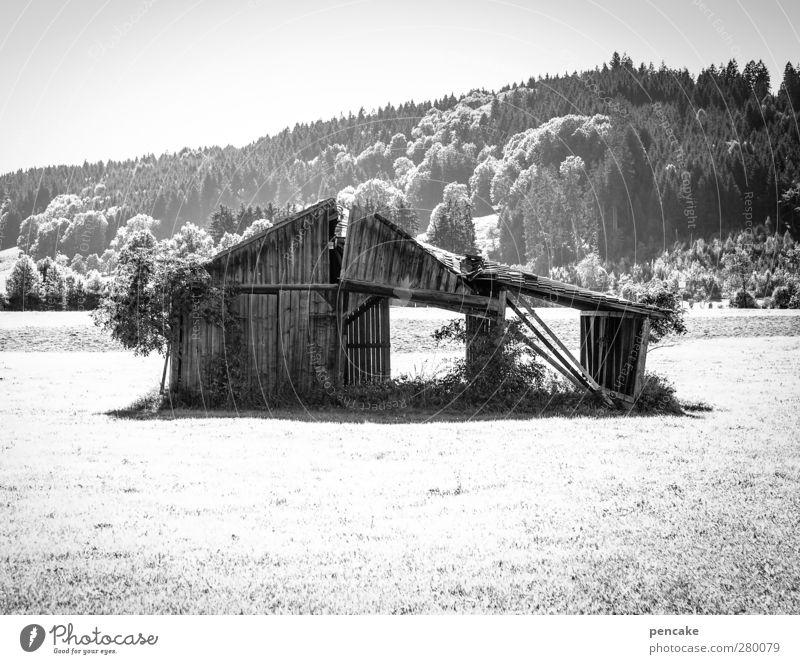 hüttenzauber Einsamkeit Landschaft Wald Wiese Eis Vergänglichkeit Frost Neigung Alpen Dorf Hütte skurril Ruine standhaft Allgäu Holzhütte