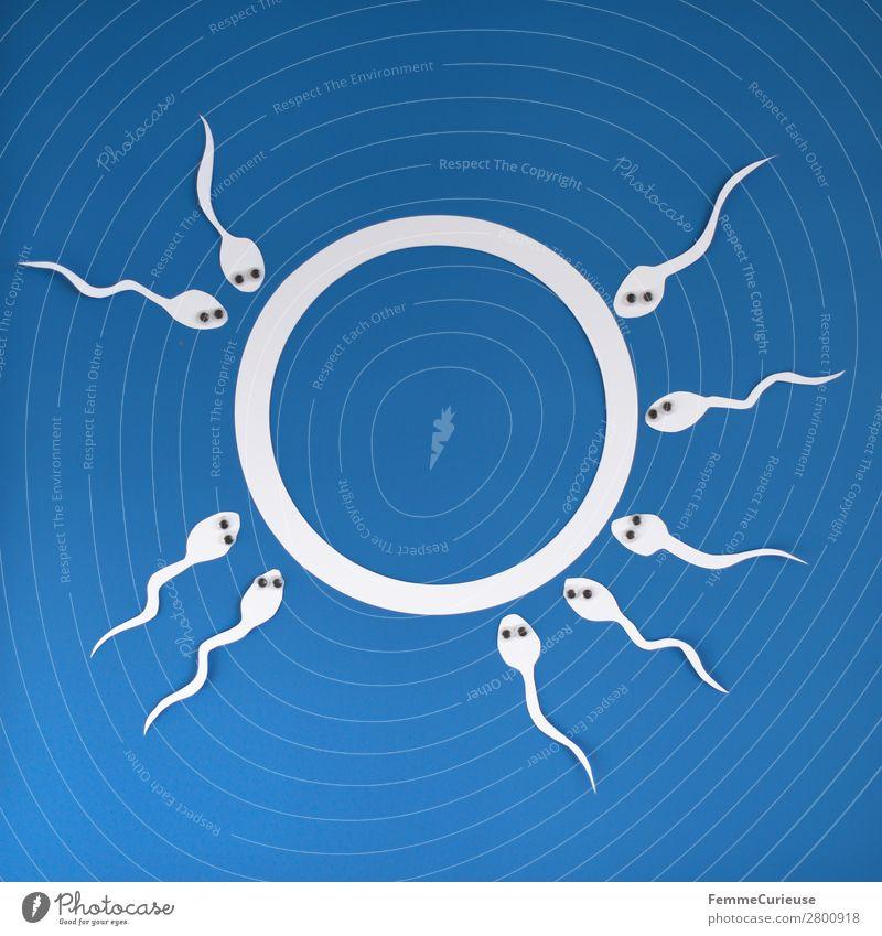 Reproduction - Sperm with wobbly eyes swimming to egg cell Zeichen Sex Sexualität Papier ausgeschnitten weiß blau Spermien Eizelle Wackelaugen Auge