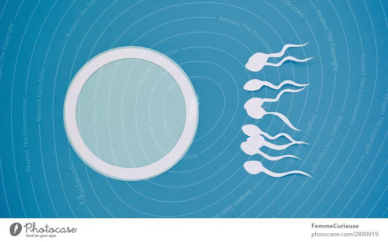 Reproduction - Sperm swimming to egg cell Zeichen Sex Sexualität Spermien Eizelle ausgeschnitten Papier weiß blau Symbole & Metaphern Fertilisation Kinderwunsch