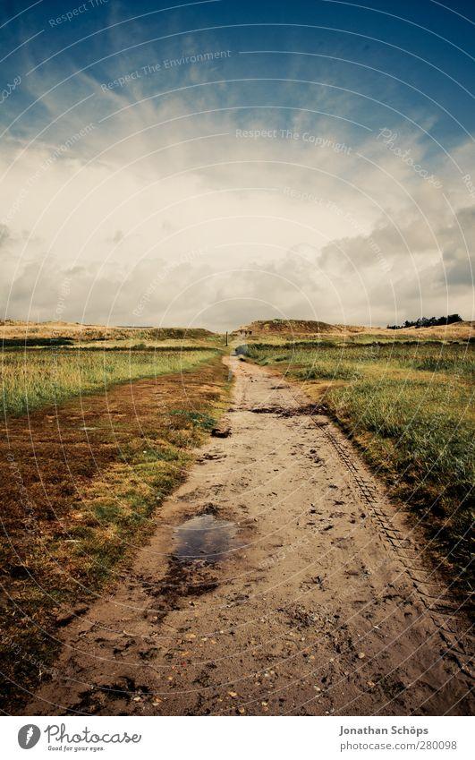 Der Weg Umwelt Natur Landschaft Himmel Sommer Schönes Wetter Wiese Feld Unendlichkeit Wege & Pfade Idylle Kitsch Düne Mitte Warmes Licht Hintergrundbild