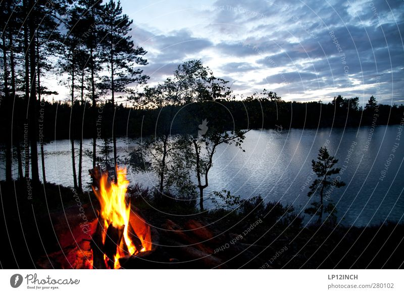 Alter Schwede II Ferien & Urlaub & Reisen Tourismus Ausflug Abenteuer Ferne Freiheit Expedition Camping Sommer Sommerurlaub wandern Umwelt Natur Landschaft