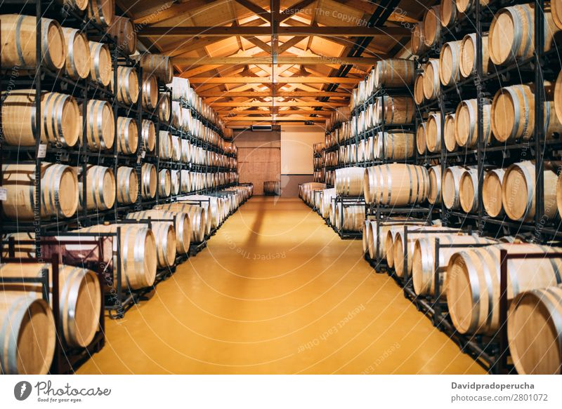 Holzweinfässer, die in einem Weingut während des Gärungsprozesses gelagert werden. Keller Fässer altehrwürdig Eiche Lager trinken Getränk Fass Geschmack