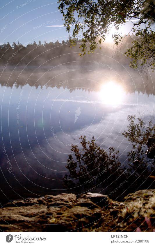 Alter Schwede III Natur Wasser Sommer Sonne Erholung ruhig Ferne Wald Umwelt Glück Freiheit See Zufriedenheit Tourismus wandern Ausflug