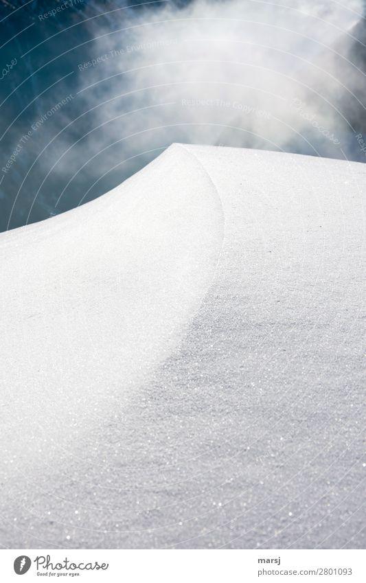 Auf die Linie schauen Natur weiß ruhig Winter kalt natürlich Traurigkeit Schnee außergewöhnlich Eis träumen Nebel elegant ästhetisch Ecke