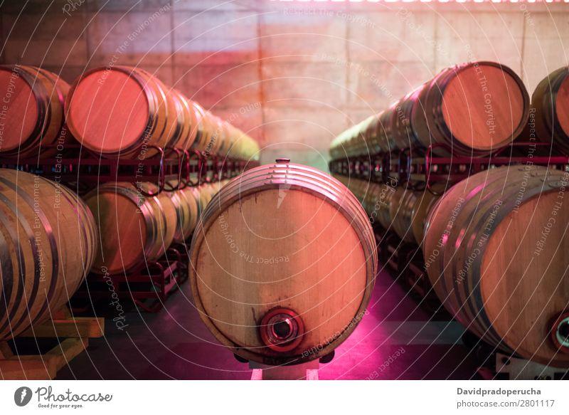 Weinfässer, die in einem Weingut während des Gärungsprozesses gelagert werden. Keller Fässer Fass Holz altehrwürdig Eiche Lager trinken Getränk Geschmack Glas