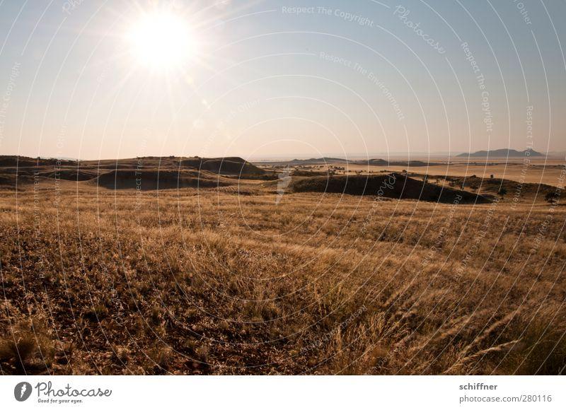 Weites Land Natur Pflanze Sonne Landschaft Ferne Umwelt Gras Klima Schönes Wetter Wüste Aussicht Hügel Unendlichkeit Wolkenloser Himmel Dürre Steppe