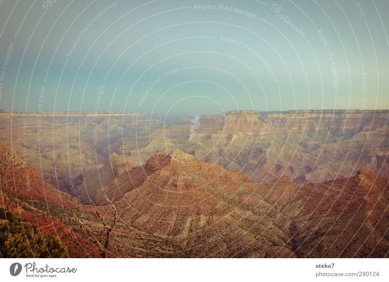 pastell-canyon Wolkenloser Himmel Sonnenaufgang Sonnenuntergang Schlucht blau braun rot ästhetisch Erholung ruhig Ferne Grand Canyon Farbfoto Außenaufnahme