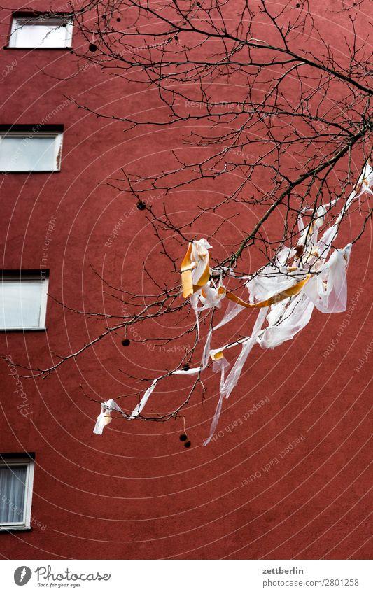 Plastikmüll Brandmauer Fassade Fenster Haus hinten Rückansicht Hinterhof Hof Innenhof Stadtzentrum Mauer Mehrfamilienhaus Menschenleer Stadthaus Textfreiraum