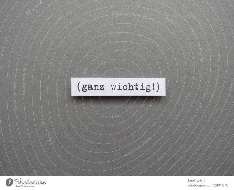 Ganz wichtig! Mitteilung Kommunizieren Text Kommunikation Typographie Schriftzeichen Buchstaben Sprache Wort Verständigung Menschenleer Letter