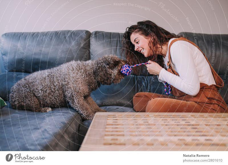 ein Hund und sein passendes Spiel auf einem Sofa mit starkem Seil Lifestyle Freude schön Erholung Freizeit & Hobby Spielen Haus Wohnzimmer Schlafzimmer Frau
