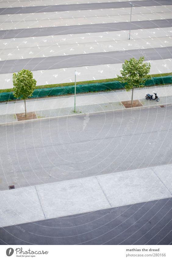 SCHATTENPARKER Stadt Baum Straße Wege & Pfade Architektur klein Linie Schilder & Markierungen leer Streifen Laterne Stadtzentrum Parkplatz Kleinmotorrad Straßenverkehr bewegungslos