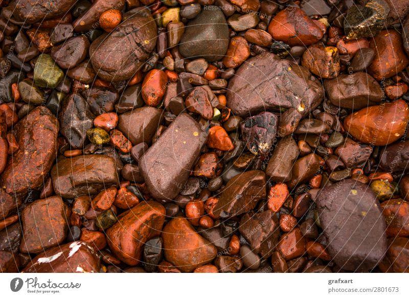 Nasse rote Kieselsteine an der Atlantikküste in Schottland hintergrund strand kiesstrand schön braun nahaufnahme farbig dekorativ design detail unterschied