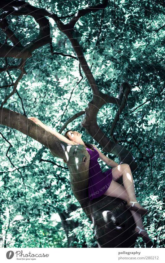 tree of life Mensch feminin Junge Frau Jugendliche Erwachsene Leben 1 18-30 Jahre Umwelt Natur Landschaft Pflanze Frühling Sommer Schönes Wetter Baum Blatt
