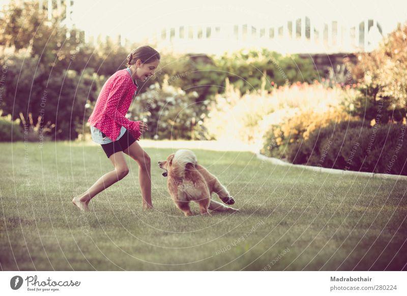fröhliche Kindheit Hund Mensch schön Mädchen Freude Tier feminin Spielen Gras Bewegung Garten lustig natürlich laufen