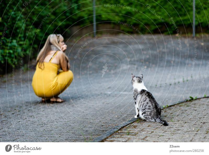 mieze trifft mieze feminin Junge Frau Jugendliche 1 Mensch 18-30 Jahre Erwachsene Sträucher Straße Kleid blond Haustier Katze beobachten hocken Kommunizieren