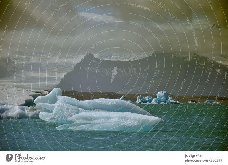 Island Umwelt Natur Landschaft Urelemente Wasser Wolken Eis Frost Berge u. Gebirge Gletscher Küste Seeufer außergewöhnlich bedrohlich dunkel kalt natürlich