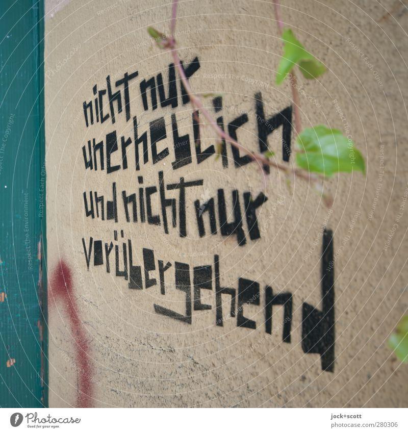 Losung Lifestyle Kunst Blatt Zweige u. Äste Mauer Wand Stein Schriftzeichen Graffiti Denken authentisch einfach einzigartig nah Willensstärke Wahrheit