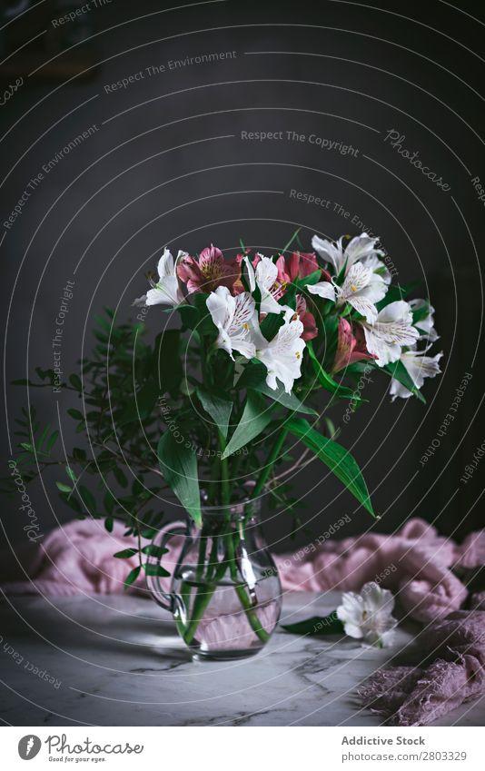 Blumenglas auf dem Tisch dekorierend rosa Dekoration & Verzierung frisch Holz Textfreiraum vertikal Gänseblümchen Blatt geblümt Glas Nahaufnahme Blüte grün