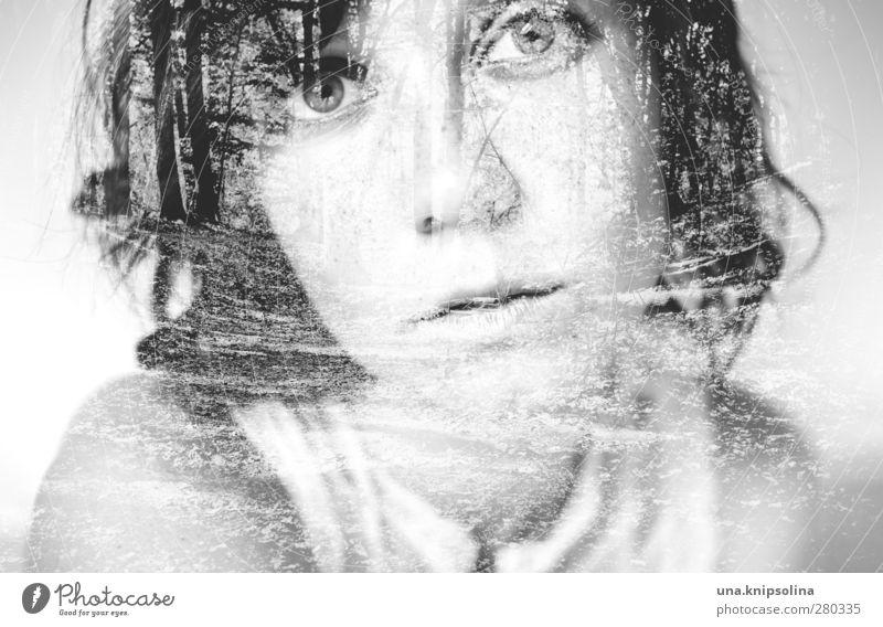past in present schön Erholung ruhig Meditation feminin Junge Frau Jugendliche Erwachsene 1 Mensch 18-30 Jahre Natur Wald brünett Locken Denken träumen elegant