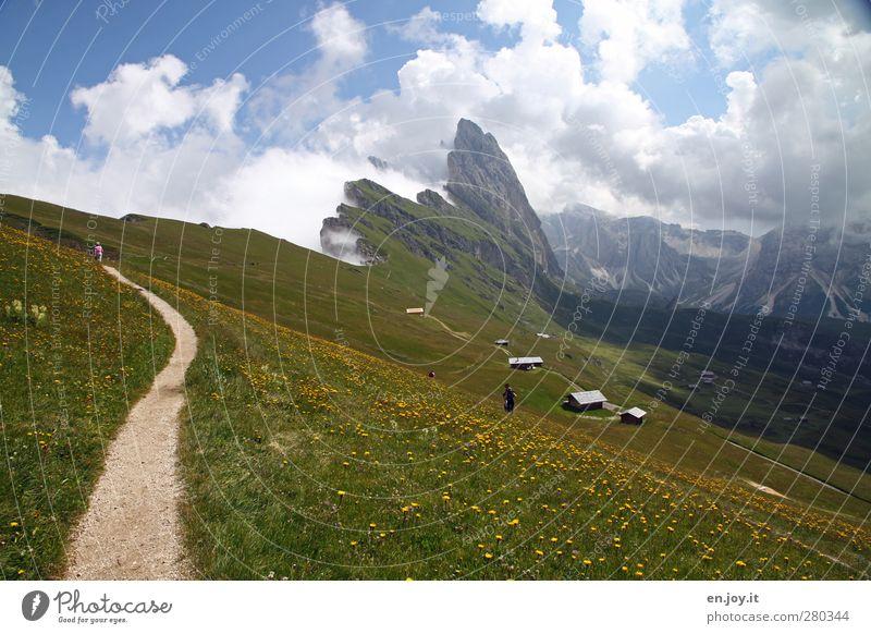 Seceda mit Geislerspitzen Mensch Natur Landschaft Pflanze Wolken Blume Gras Wiese Hügel Felsen Alpen Berge u. Gebirge Gipfel Wege & Pfade Blühend Erholung