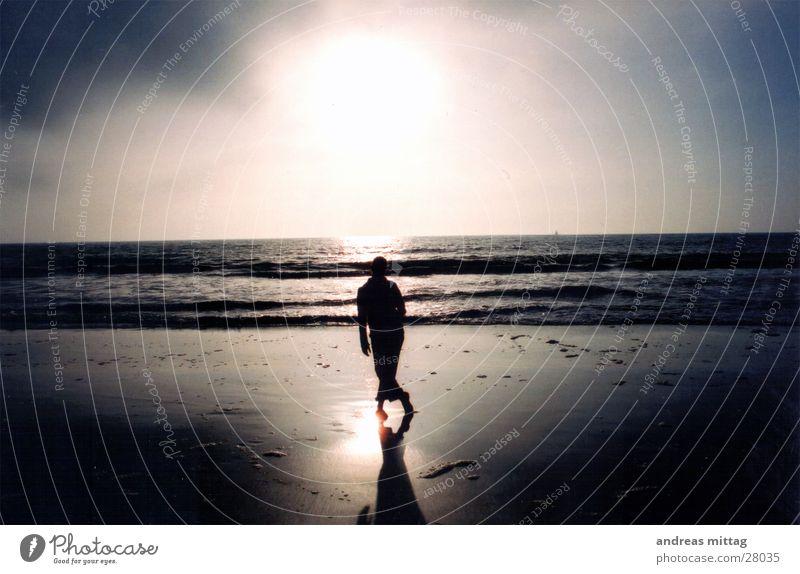Sonnenuntergang Frau Mensch Natur Wasser Meer Strand