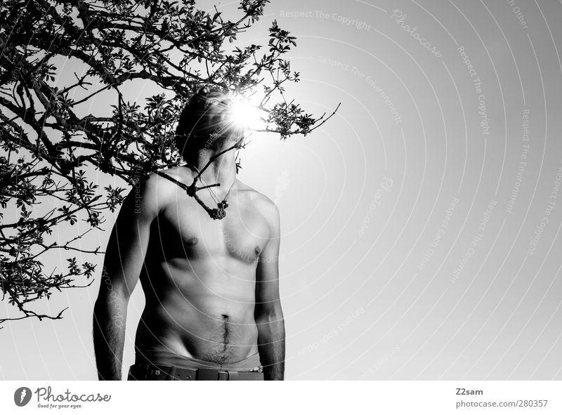 Sonne tanken Mensch Natur Jugendliche Stadt Sommer Baum Einsamkeit ruhig Landschaft Erwachsene Erholung Umwelt dunkel Junger Mann Stil träumen