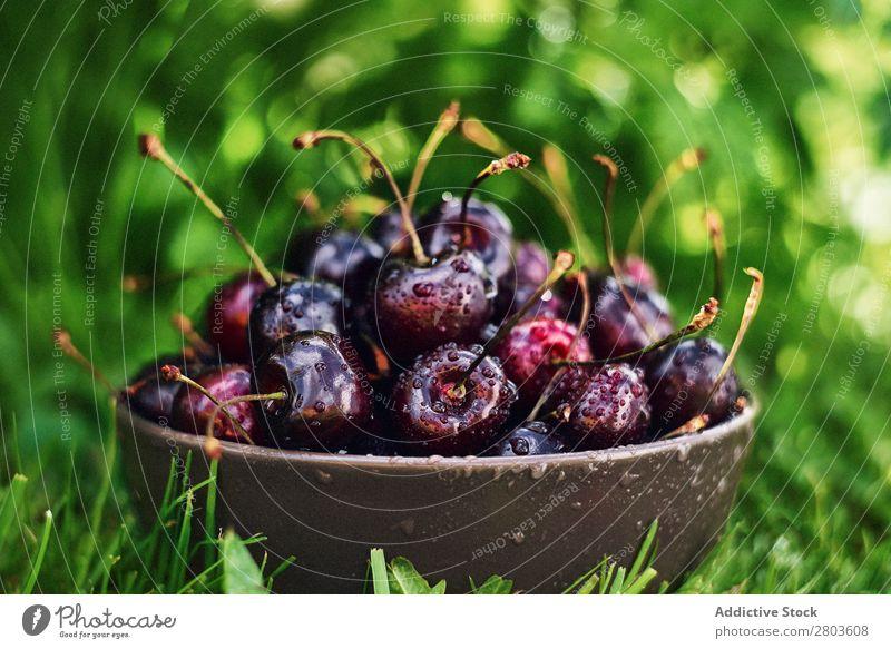 Schüssel mit nassen Kirschen auf Gras Schalen & Schüsseln frisch Garten Gesundheit reif süß Frucht Sommer Beeren Lebensmittel roh Dessert organisch saftig