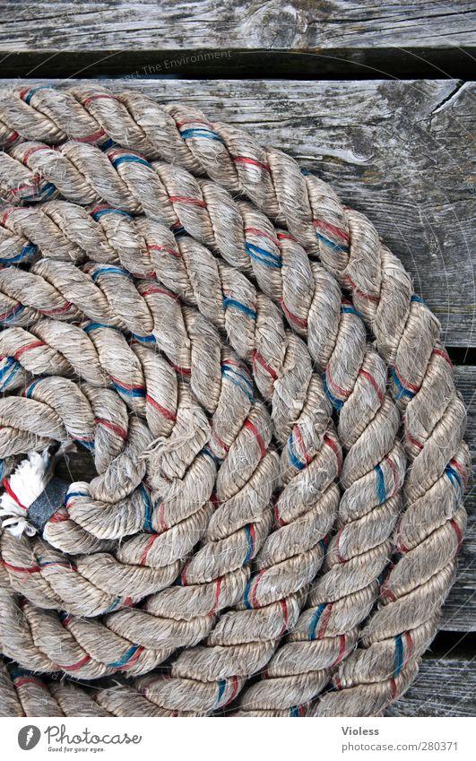 Hiddensee | Maritim Schifffahrt Binnenschifffahrt Kreuzfahrt Bootsfahrt Beiboot Wasserfahrzeug Seil Sicherheit Farbfoto
