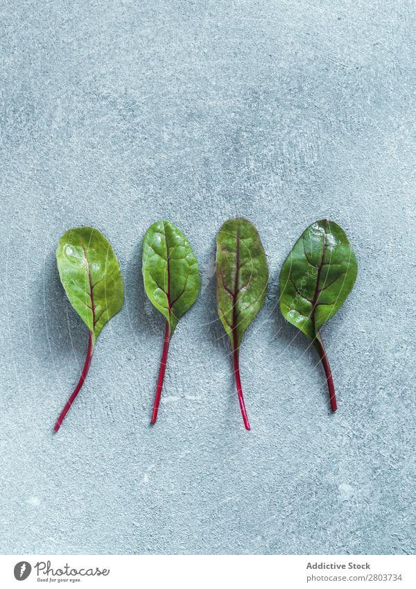 Set aus grünen Mangoldblättern oder Mangold isoliert Rote Beete Blatt Hintergrundbild Salatbeilage Vogelperspektive Design Verschiedenheit Lebensmittel frisch