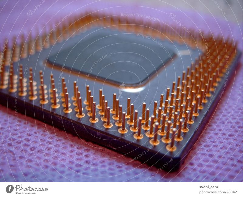 Alte CPU auf Klopapier ;-) Prozessor violett Noppe Toilettenpapier Makroaufnahme Nahaufnahme Pins orange Computer Technik & Technologie