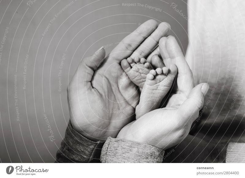 Mütterhände, die Frühgeborene halten, Füße von Frühgeborenen Lifestyle Gesundheitswesen Kindererziehung Mensch Baby Eltern Erwachsene Mutter Hand Fuß 2