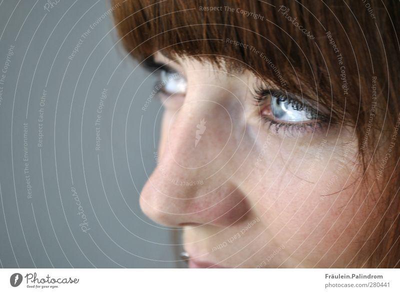 . Mensch Frau Jugendliche Erwachsene Auge Liebe feminin Junge Frau Haare & Frisuren träumen 18-30 Jahre glänzend Zufriedenheit Nase leuchten Lächeln