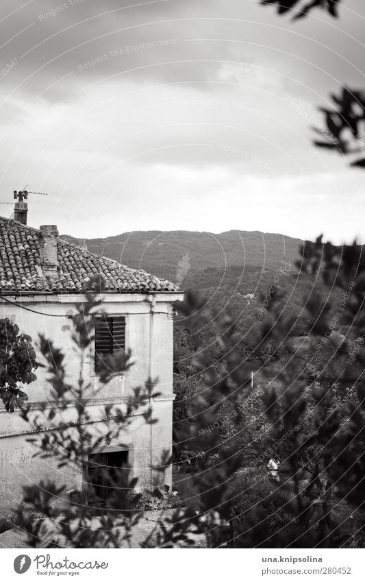 villa Umwelt Landschaft Wolken Baum Blatt Berge u. Gebirge Hum Kroatien Haus Einfamilienhaus Traumhaus Bauwerk Gebäude Fassade Fenster alt eckig Idylle