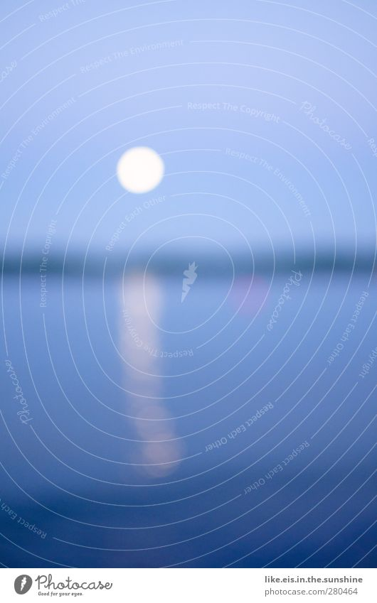 into the blue. Himmel Natur blau Wasser Meer Einsamkeit ruhig Landschaft Umwelt See Horizont glänzend Urelemente Nordsee Ostsee Mond