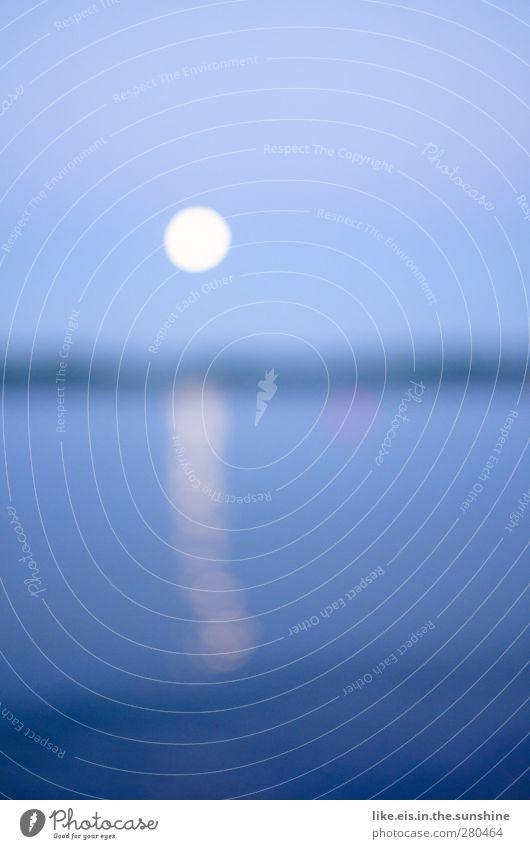 into the blue. Umwelt Natur Landschaft Urelemente Wasser Himmel Wolkenloser Himmel Nachthimmel Horizont Mond Vollmond Nordsee Ostsee Meer See blau