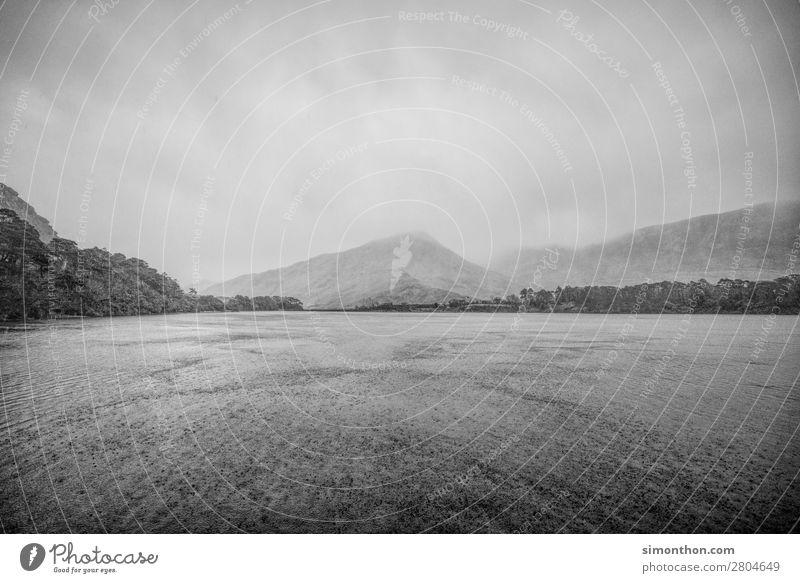 See Umwelt Natur Landschaft Tier Luft Wasser Himmel Wolken Gewitterwolken schlechtes Wetter Unwetter Sturm Nebel Regen Hügel Berge u. Gebirge Küste Seeufer
