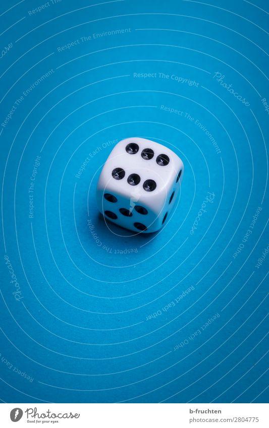 sechs Glück Freizeit & Hobby Spielen Spielzeug Zeichen Blick blau weiß Würfel 6 Punkt Glücksspiel würfeln Farbfoto Innenaufnahme Studioaufnahme Nahaufnahme