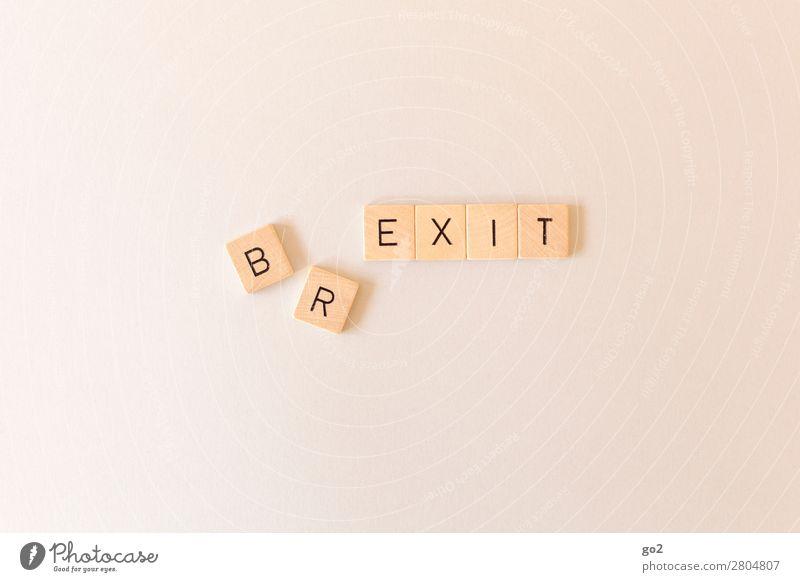 BR/EXIT Holz Spielen Erde Europa Schriftzeichen Zukunft Wandel & Veränderung Macht Zukunftsangst Verfall Ende Konflikt & Streit Gesellschaft (Soziologie)